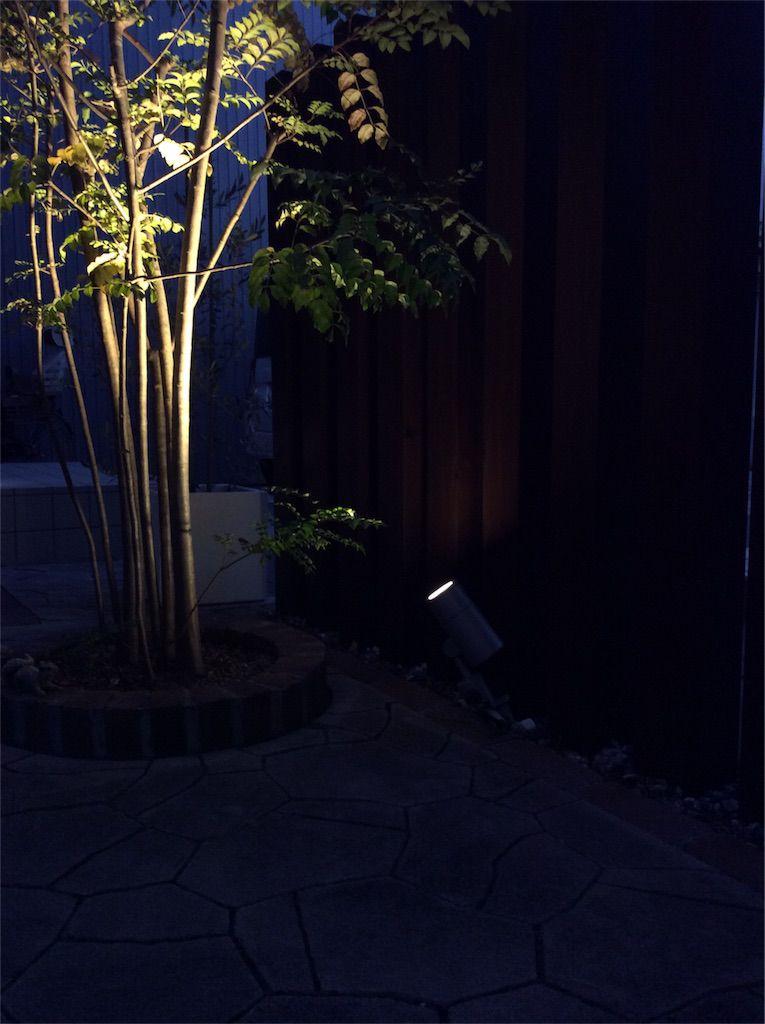 庭スポットライト